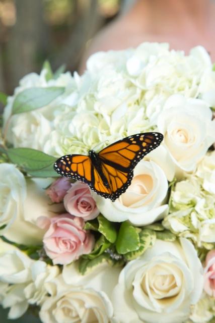 Daniels-Bouquet