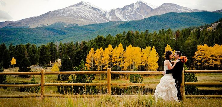 Fall-Meadow